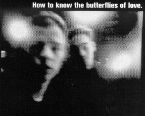 how to know the butterflies of love cd on secret7 records lp on fortuna pop! uk